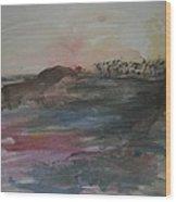 Stenson Beach At Sunset Wood Print