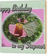 Stepmother Birthday Greeting Card - Butterfly On Flower Wood Print