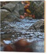 Stepping Stone Wood Print