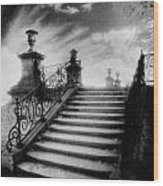 Steps At Chateau Vieux Wood Print