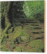 Steps In The Wild Garden, Galnleam Wood Print