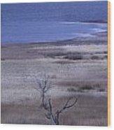 Stevenson Lake Wood Print