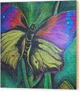 Still Butterfly Wood Print