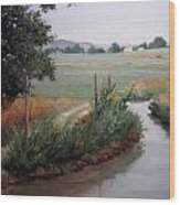 Still Water-irrigation Wood Print by Victoria  Broyles