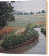 Still Water-irrigation Wood Print by Victoria  Broyles