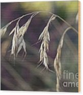 Stillness In The Wind Wood Print by Terrie Taylor