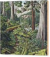 Stoltman Old Growth Forest Landscape Painting Wood Print