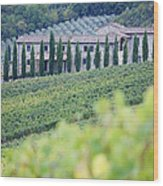 Stone Farmhouse And Vineyard Wood Print