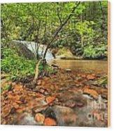 Stone Mountain Lower Falls Wood Print