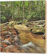 Stone Mountain Stream Wood Print