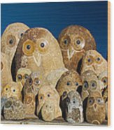 Stone Owls Wood Print