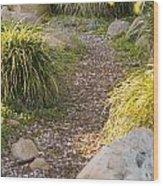 Stone Path Through Garden Wood Print by James Forte