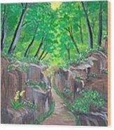 Stone Ravine Wood Print