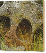 Stone Skull Wood Print