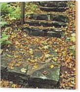 Stone Stairway In Forest, Cape Breton Wood Print