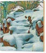 Stone Steps In Winter Wood Print