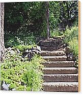 Stone Steps Wood Print by Myrna Migala