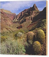 Stonecreek Canyon In The Grand Canyon Wood Print