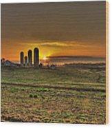 Stonehenge Of The Heartland Wood Print