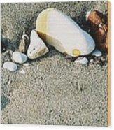 Stones On The Beach Wood Print