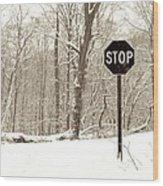 Stop Snowing Wood Print by John Stephens