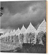 Storm Light On Grain Stacks Not Far Wood Print
