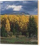 Storm Over Sleeping Indian-grand Tetons Wood Print