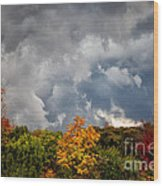 Storms Coming Wood Print