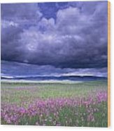 Stormy Clouds Approaching Field Of Wood Print