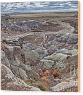 Stormy Morning At Petrified Forest  Wood Print