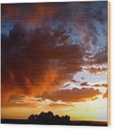 Stormy Sunset Over A Tree Canopy Wood Print
