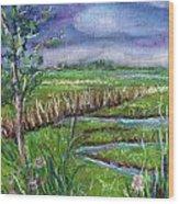 Stormy Wetlands Wood Print