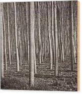 Straight Trees Wood Print