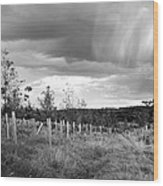 Strange Clouds Wood Print