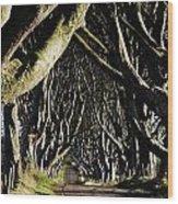 Stranocum, Co. Antrim, Ireland Wood Print