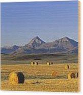 Straw Bales, Pincher Creek, Alberta Wood Print