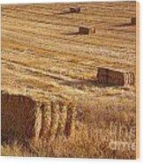 Straw Field Wood Print