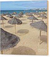 Straw Sunshades Wood Print