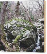 Skotina Springs Wood Print