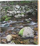 Stream In Nova Scotia Wood Print