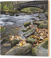 Stream In The Great Smokie Mountain National Park Wood Print