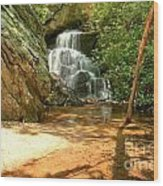 Stream To The Falls Wood Print