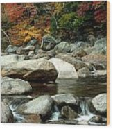 Streamside Color Wood Print