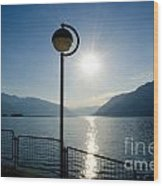 Street Lamp And Water Wood Print