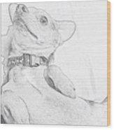 Stretchy Poo 🐶 Woof! Wood Print