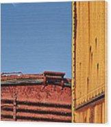 Striking Color Wood Print