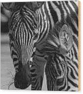Stripes - Zebra Wood Print