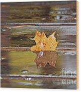 Stuck Maple Leaf Wood Print