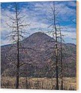 Studies On Sugarloaf Peak 2 Wood Print