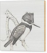 study for Belted Kingfisher painting Wood Print